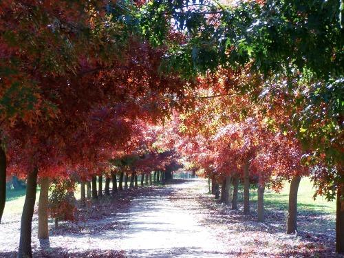 autumn2 022